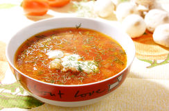 Placa da sopa Imagem de Stock
