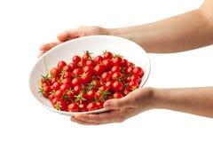 Placa da terra arrendada da mão com os tomates de cereja frescos Foto de Stock Royalty Free