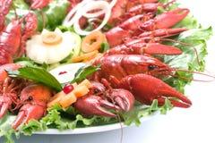 Placa das lagostas Imagem de Stock Royalty Free