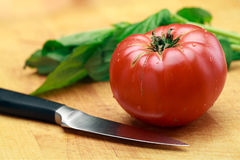 Placa de Basil And Knife On Cutting do tomate Imagens de Stock Royalty Free