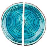 Placa de cerámica quebrada imagen de archivo