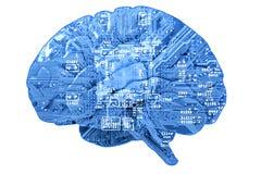 Placa de circuito no formulário do cérebro humano Foto de Stock