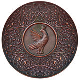 Placa de cobre Fotografía de archivo libre de regalías
