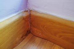 A placa de contorno de madeira transformou-se inchamento devido ao incidente de dano da ?gua ocorre imagens de stock royalty free