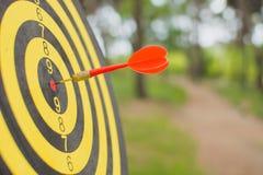 Placa de dardo com a seta dos dardos no centro do alvo no parque Fotografia de Stock