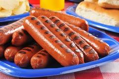 Placa de la comida campestre de perritos calientes asados a la parrilla Imagenes de archivo