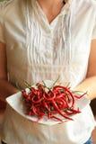 Placa de la explotación agrícola de la mujer de las pimientas de chile rojo frescas Imagen de archivo libre de regalías