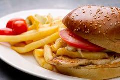 Placa de la hamburguesa del pollo con las patatas fritas y la ensalada Fotografía de archivo