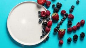 Placa de la visión superior con la variedad de frutas, de bayas y de corazones del bosque en un fondo azul almacen de video