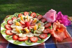 Placa de las frutas Imagen de archivo libre de regalías