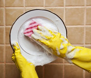 Placa de lavagem Foto de Stock Royalty Free