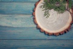 Placa de madeira com as folhas do thuja na tabela de madeira Fotos de Stock Royalty Free