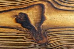 Placa de madeira da textura, fim acima, fundo da vista superior Fotos de Stock