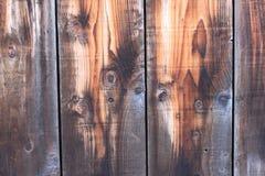 Placa de madeira envelhecida Imagem de Stock