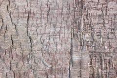 Placa de madeira idosa Fotografia de Stock Royalty Free
