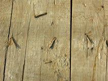 Placa de madeira idosa com pregos oxidados fotografia de stock royalty free