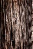 Placa de madeira muito idosa Foto de Stock
