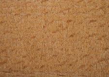 Placa de madeira natural Imagens de Stock Royalty Free