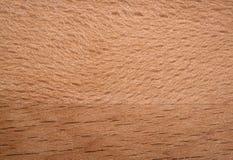 Placa de madeira natural Imagem de Stock Royalty Free
