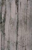 Placa de madeira pintada idosa Imagem de Stock