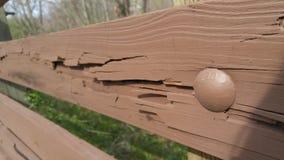 Placa de madeira rachada abstrata foto de stock