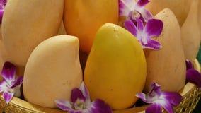 Placa de oro con los mangos y las flores Mangos amarillos maduros sabrosos y flores púrpuras hermosas de la orquídea colocados en almacen de video