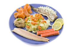 Placa de peixes Imagens de Stock