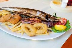 Placa de peixes Imagens de Stock Royalty Free