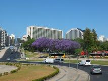 Placa De Pombal Холм стоковые фото