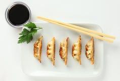 Placa de Potstickers fritado chinês suculento fotografia de stock royalty free