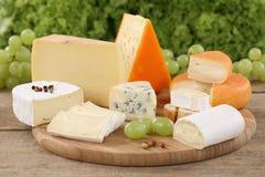 Placa de queso con camembert, la montaña y el queso suizo Imágenes de archivo libres de regalías