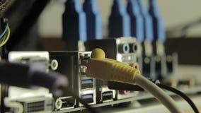 Placa de rede com cabo no cartão-matriz com razer em um fundo Lâmpada de piscamento, presença do sinal filme