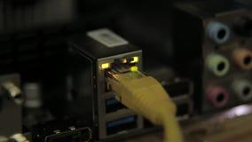 Placa de rede com cabo no cartão-matriz Lâmpada de piscamento, presença do sinal video estoque
