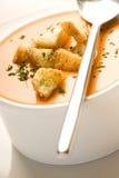 Placa de sopa Imagem de Stock