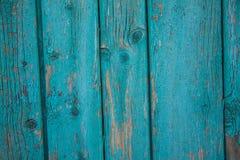 Placa de turquesa com pintura da casca fotos de stock