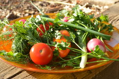 Placa de verduras frescas Fotos de archivo