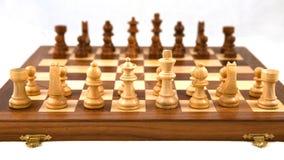 Placa de xadrez fotos de stock royalty free