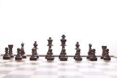 Placa de xadrez Fotografia de Stock