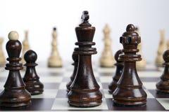 Placa de xadrez com partes de xadrez Fotografia de Stock Royalty Free