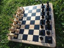 Placa de xadrez de madeira na grama Foto de Stock Royalty Free