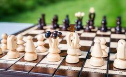 Placa de xadrez de vista bonita Imagem de Stock Royalty Free