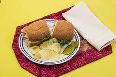 Placa del almuerzo con el bocadillo, los microprocesadores y las salmueras imagen de archivo