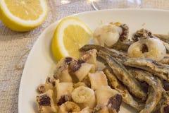 Placa del calamar, de pescados y del limón fritos Foto de archivo libre de regalías