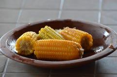 Placa del maíz Fotos de archivo libres de regalías