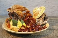 Placa del otoño de las castañas Imagen de archivo libre de regalías