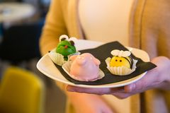 Placa disponible del control de la muchacha con las tortas hechas en casa en la forma del anim Imágenes de archivo libres de regalías