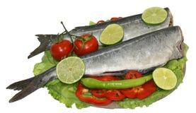 Placa do alimento de peixes crus fotos de stock royalty free