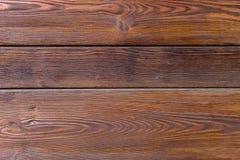 Placa do carvalho Fotografia de Stock