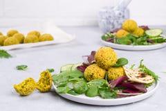 Placa do falafel cozido com pão do pão árabe, molho do tzatziki e folhas da salada fotos de stock