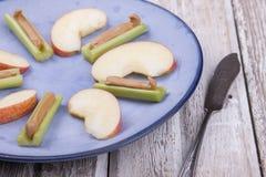 Placa do fruto e do vegetariano Fotos de Stock